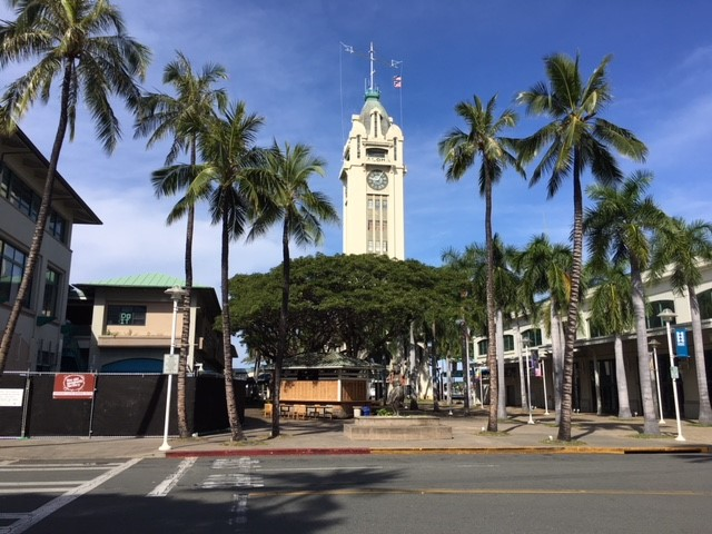 tower hawaii new